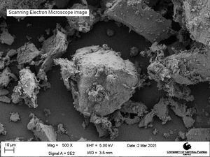 Scanning electron microscope image of LMS-1, magnification 500X