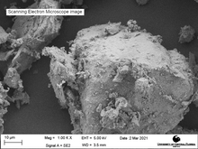Load image into Gallery viewer, Scanning electron microscope image of LMS-1, magnification 1000X