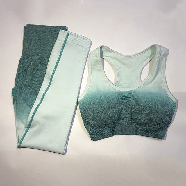 Women's Yoga Set Gym Clothing Ombre Seamlesss