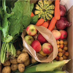 Medium Veg Box - Cherries & Carrot Tops