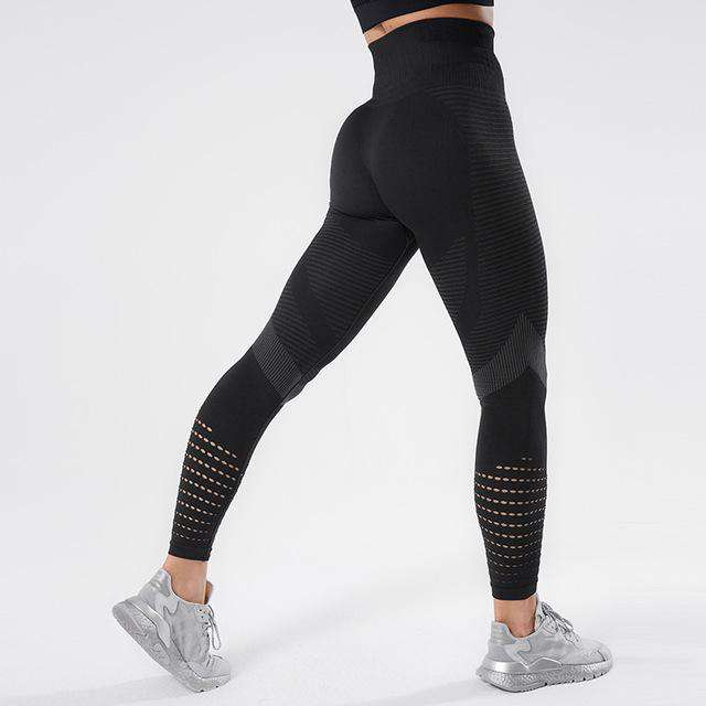 The Sculpt Leggins - FitnessVictor