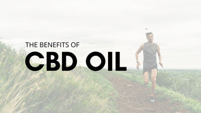 What Is Full Spectrum CBD Oil, And What Are Its Benefits?