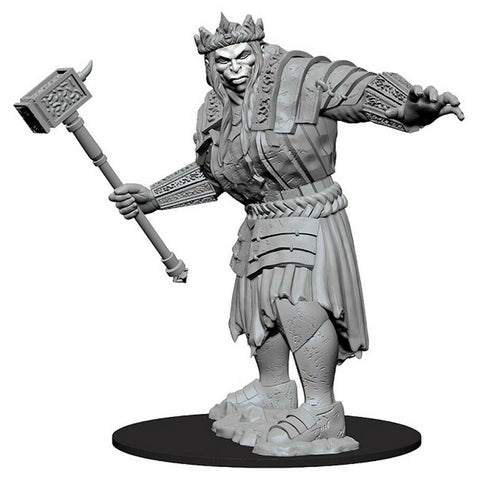 Dungeons and Dragons  Nolzur's Marvelous Unpainted Minis: Fire Giant