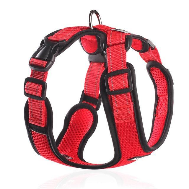 No Pull Mesh Dog Harness - The Bark 'n' Paws