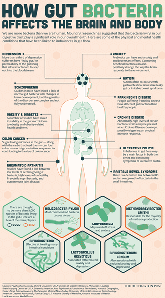 Huffington Post infographic shared by Inspired by Dawn on the impact of a healthy gut