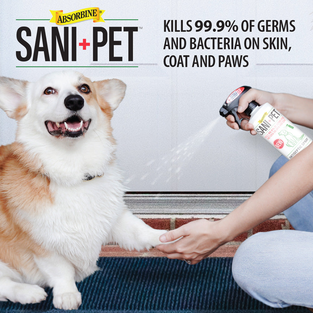 SaniPet™ Pet Safe Sanitizing Coat and Paw Spray, Alcohol Free, 16 oz.