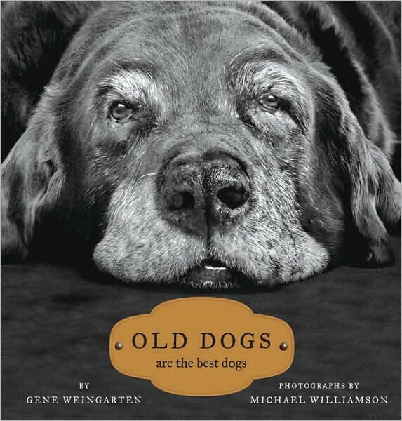 Book - Old Dogs Are The Best Dogs