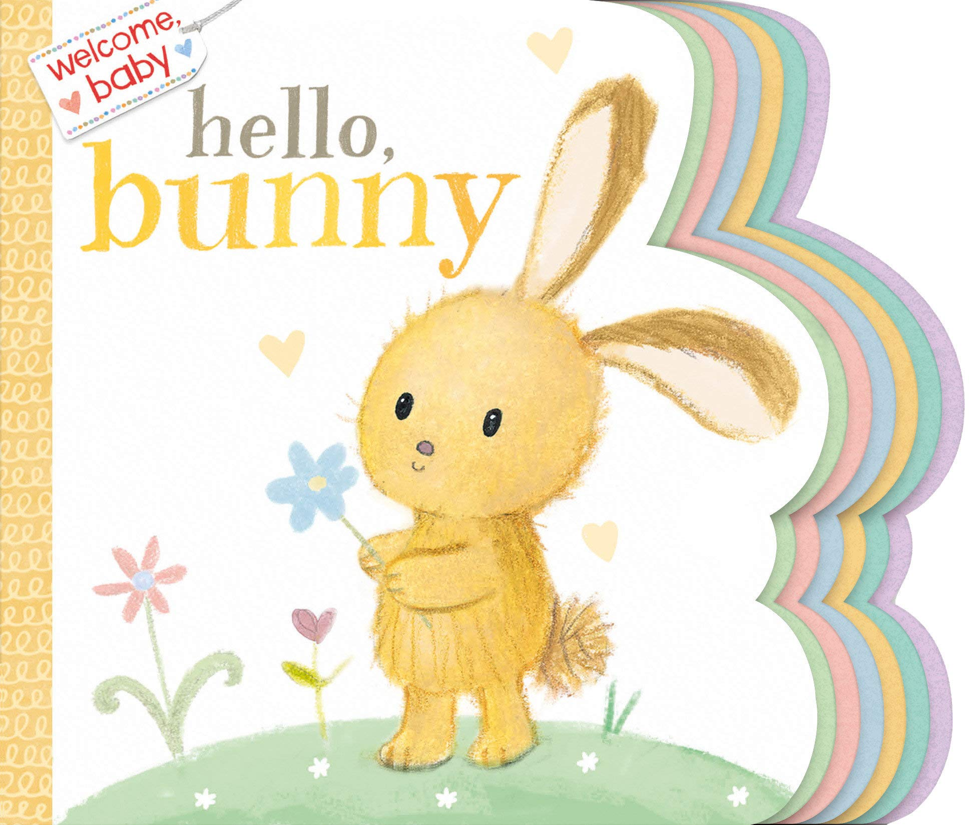 Book - Hello, Bunny: Welcome, Baby