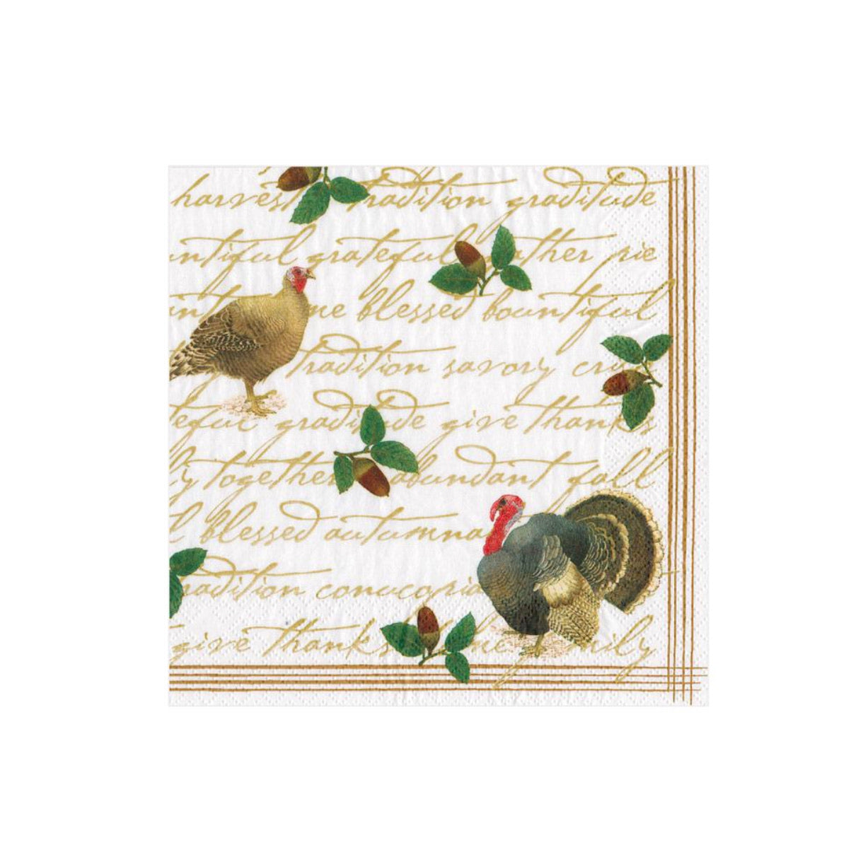 Caspari - Founders' Thanksgiving Paper Cocktail Napkins - 20 Per Package