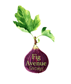 Fig Avenue Gnomes