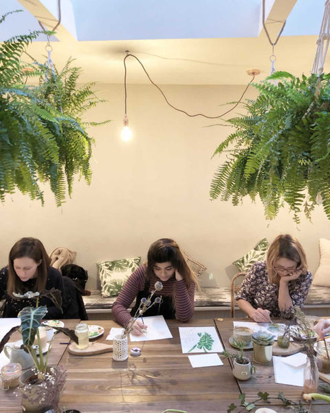 Botanical beginners illustration class in Leeds at Today Studio