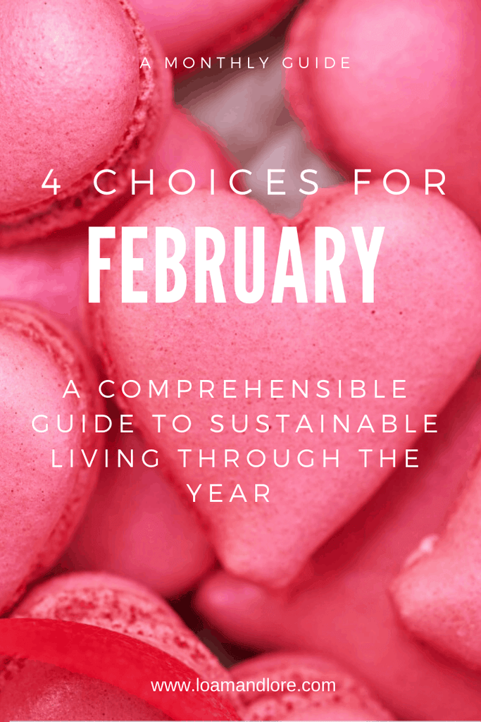 4 Healthy and Sustainable Ways to Live an Eco-Conscious Lifestyle: February | Loam & Lore