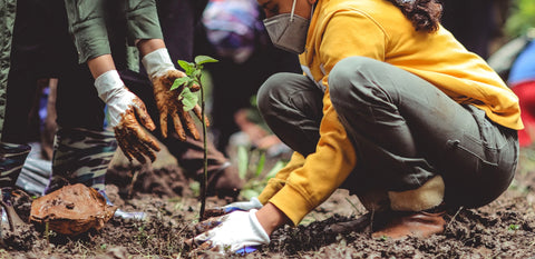 People planting trees, with a mask on and using appropriate precautions. Photo credit : Ecologi