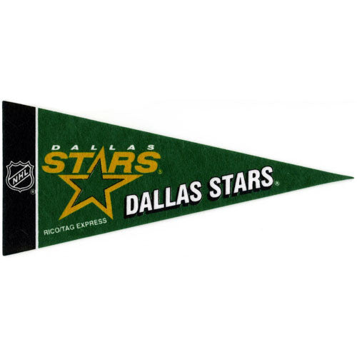 Dallas Stars Mini Pennant (2-Pack)