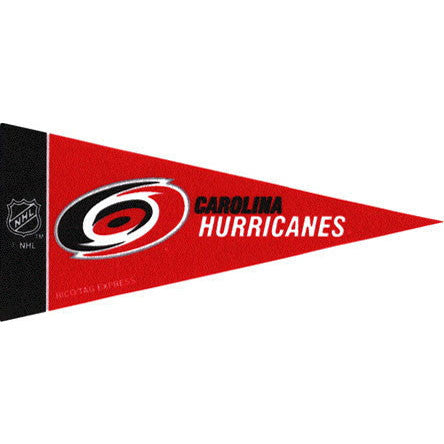 Carolina Hurricanes Mini Pennant (2-Pack)