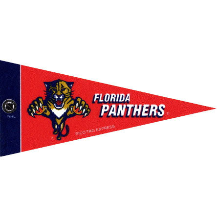Florida Panthers Mini Pennant (2-Pack)