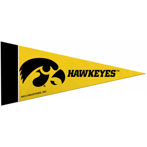 Iowa Hawkeyes Mini Pennant (2-Pack)
