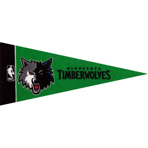 Minnesota Timberwolves Mini Pennant (2-Pack)