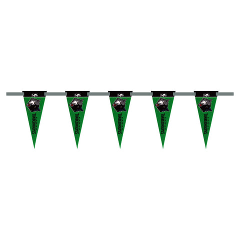 Minnesota Timberwolves 3 Foot Pennant String