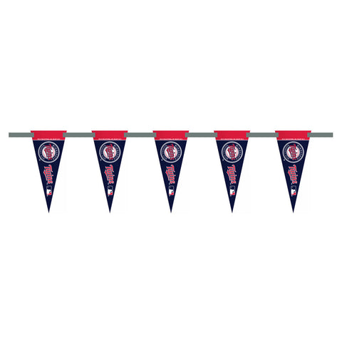 Minnesota Twins 3 Foot Pennant String