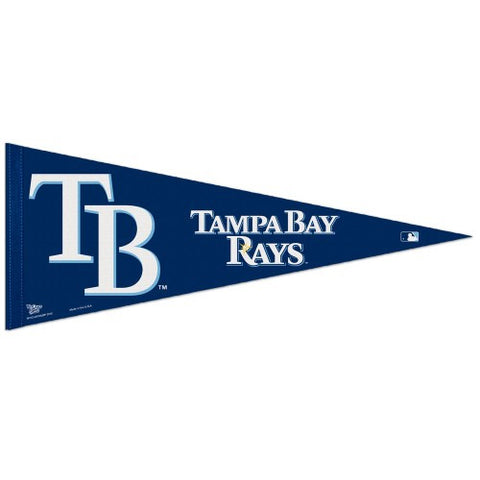 Tampa Bay Rays Pennant MLB Baseball Full Size (2-Pack)