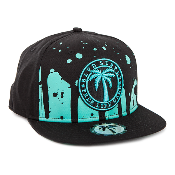 Blvd Supply Dip Splash Snapback