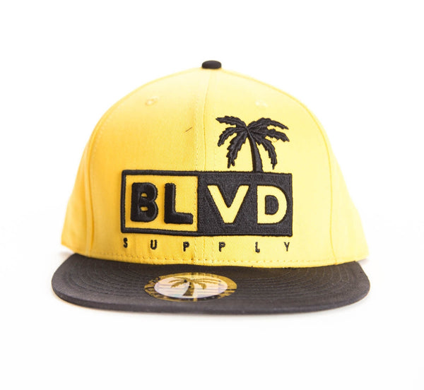 Lift Tree Snapback - BLVD Supply inc