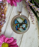 Black/Blue Butterfly Resin Necklace, Opal Crystal Pendant