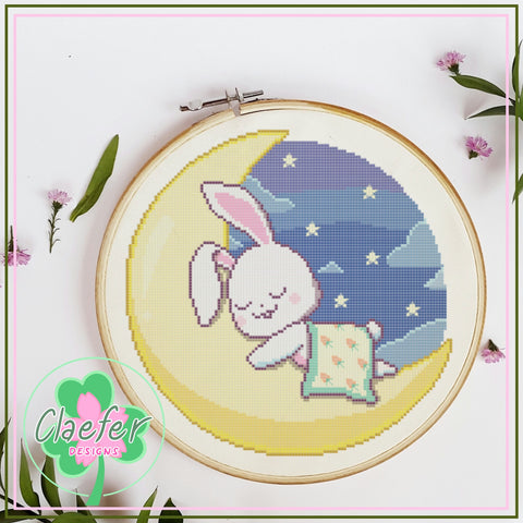 Sleepy Bunny and Moon