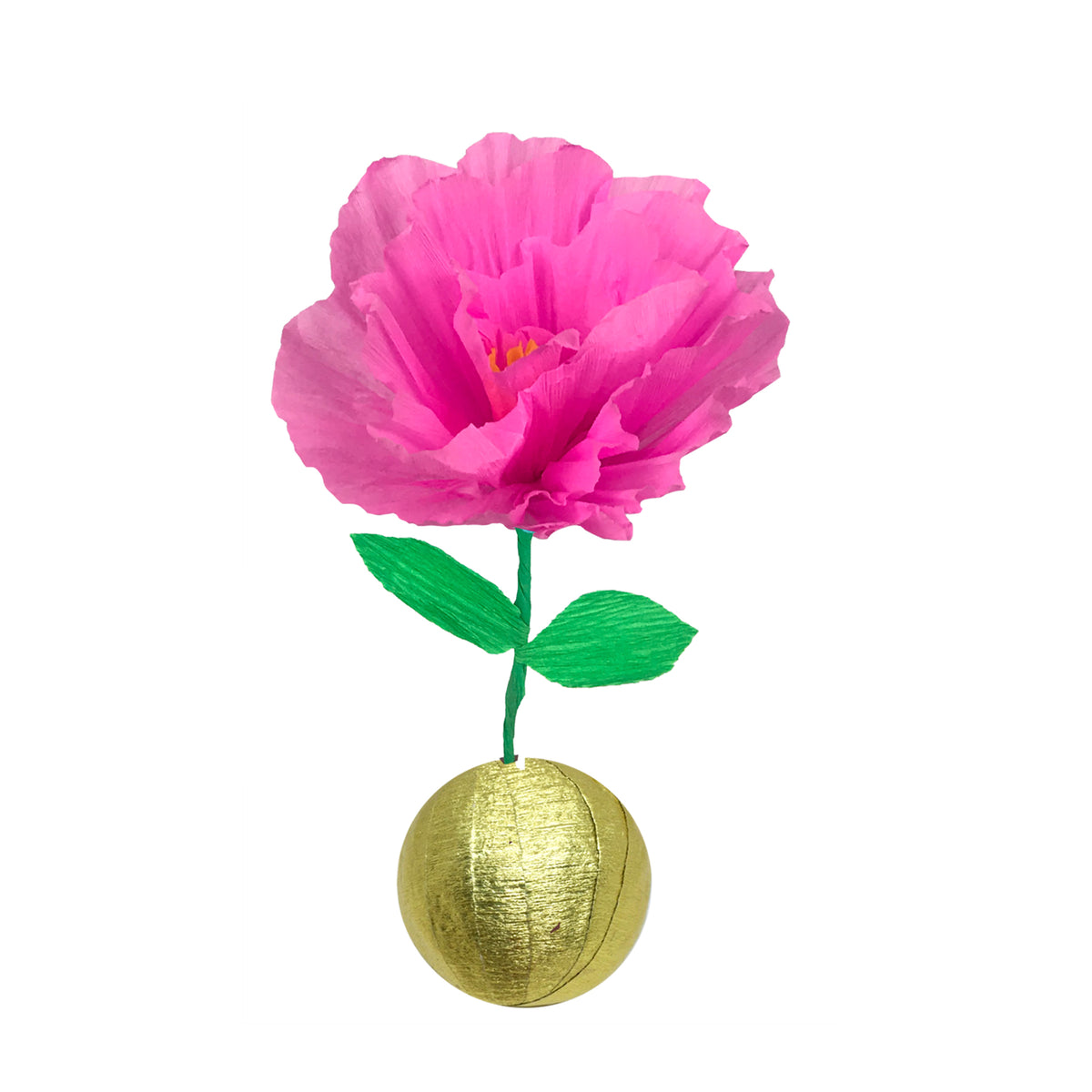Mini Surprize Ball Flower Bulb