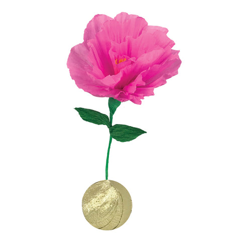 Mini Surprize Ball Flower Bulb Pink & Gold