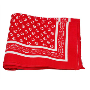 Red Paisley Border Handkerchief - MrSnuff