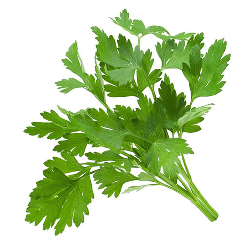 Load image into Gallery viewer, Parsley 250 gms