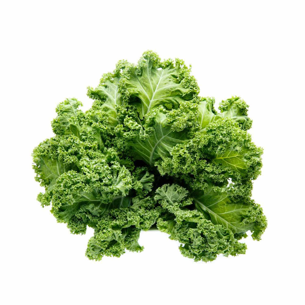 Load image into Gallery viewer, Curly Kale
