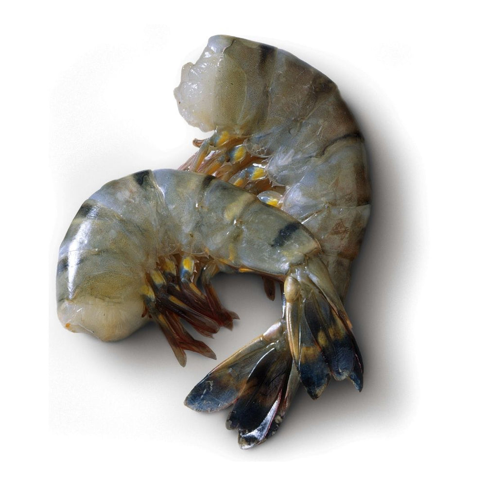 Tiger Shrimps 500g medium