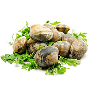 Load image into Gallery viewer, Local Clams 1Kg