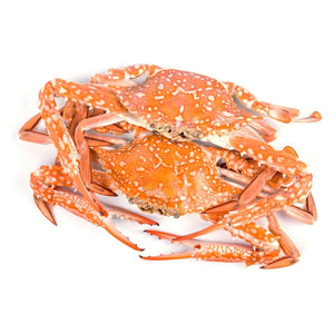 Load image into Gallery viewer, Crab 1Kg Big