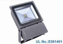 100 Watt Outdoor Bridgelux flood lights