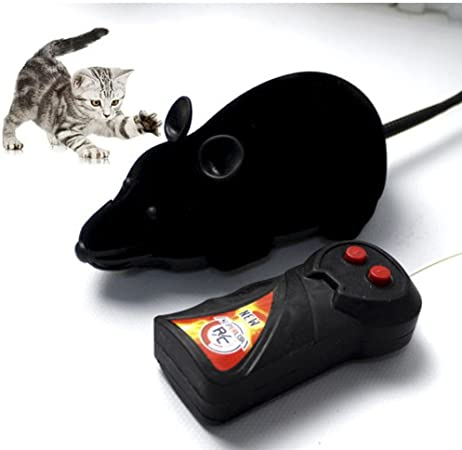 wireless-remote-controlled-toy-mouse.jpg