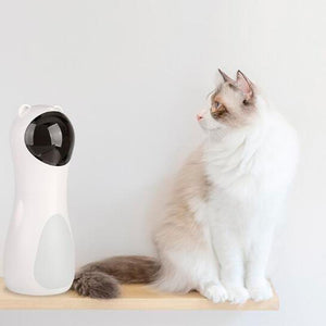 Invigorating Cat Laser Toy - COOLCrown Store