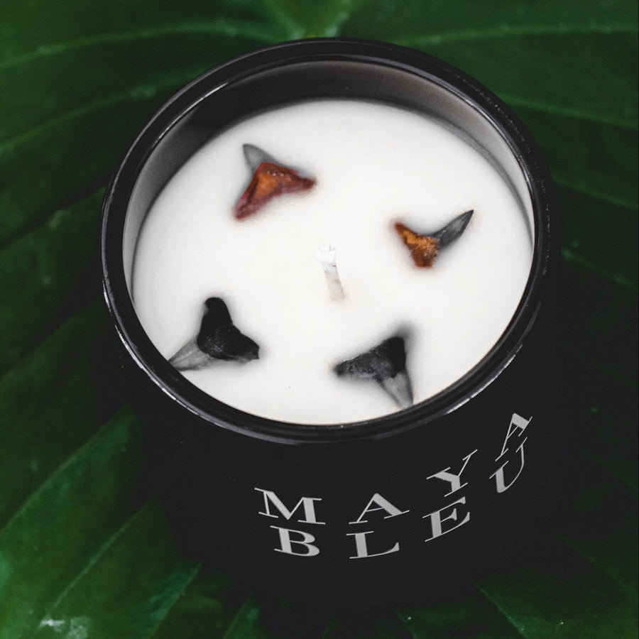 Original Shark Tooth Candle BLCK