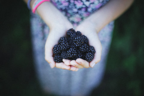 blackberry picking good for the soul
