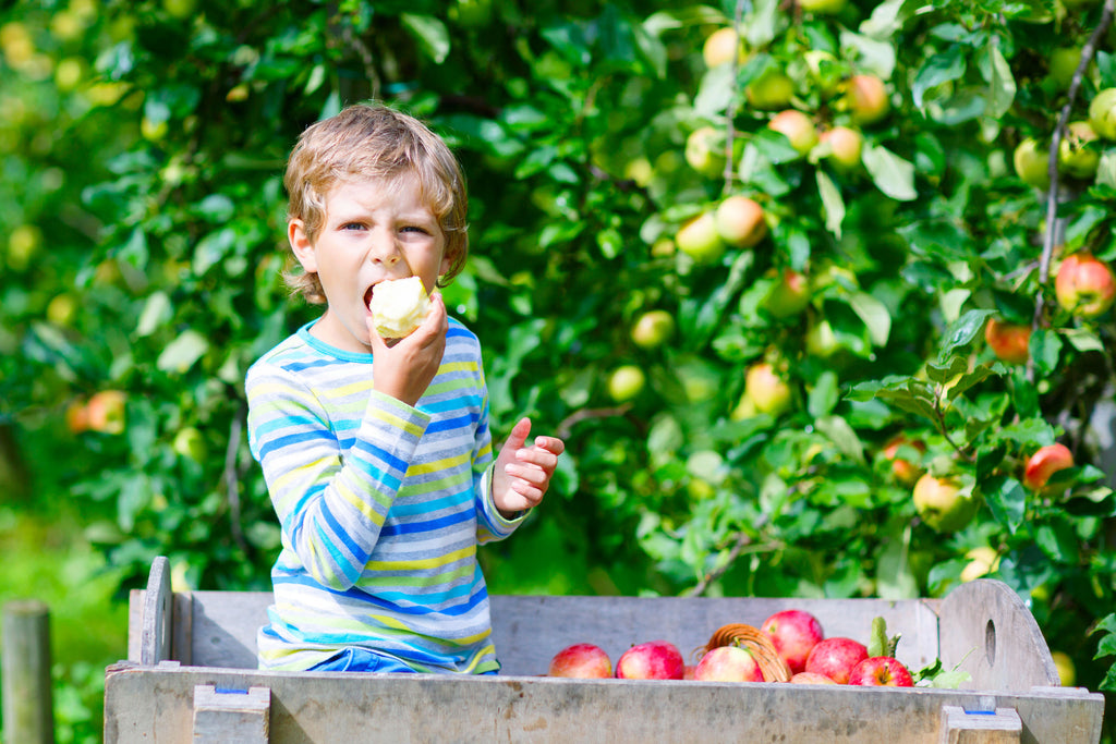 The Multivitamin Series - 5 - 10 Year Olds