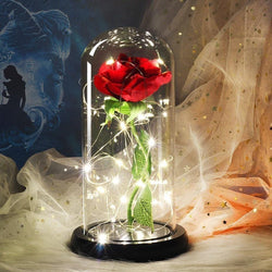 6 Colour Beauty And The Beast Red Rose In A Glass Dome On A Wooden Base - OZ Discount Store