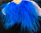 Bright blue feather