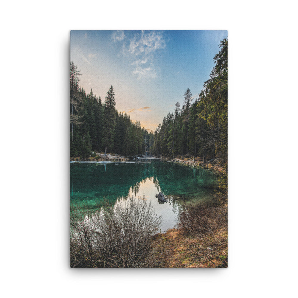 Forest Canvas