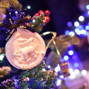 Scented Christmas Decoration