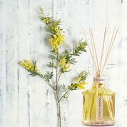 Mimosa Luxury Home Fragrance Diffuser