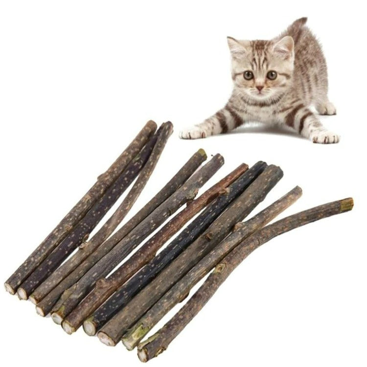 Natural Matatabi Catnip Cat Snacks Sticks