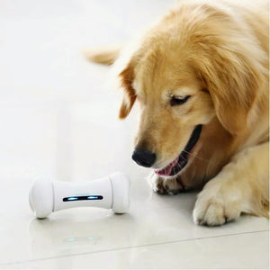 Phone Controlled Electric Pet Toy